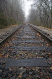 De Sporen en de Mist van de trein Stock Afbeelding