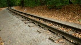 De sporen in het de herfstbos de spoorweg gaat in de afstand voor een draai stock footage