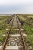 De sporen richten zich bij horizon Royalty-vrije Stock Foto's
