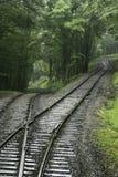 De sporen van de achtbaantrein in het bos royalty-vrije stock foto