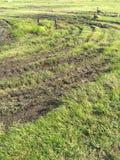 De sporen van de gansband Stock Afbeeldingen