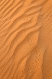 De sporen van de hagedis op woestijnzand Royalty-vrije Stock Foto's