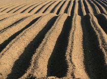 De sporen van de landbouwgrond Stock Afbeelding