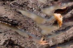 De sporen van de modder Stock Foto