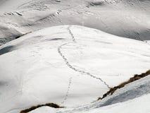 De sporen van de ski in bergsneeuw Royalty-vrije Stock Afbeeldingen
