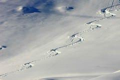 De sporen van de ski in de poedersneeuw royalty-vrije stock afbeeldingen
