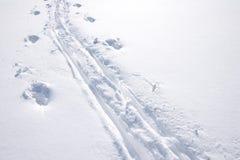 De sporen van de ski met ruimte voor exemplaar stock foto