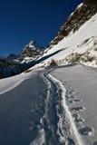 De sporen van de skis Stock Foto's
