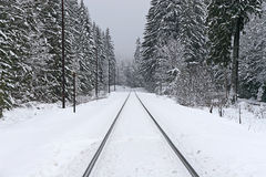 De Sporen van de spoorweg in de Winter Royalty-vrije Stock Fotografie