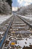 De sporen van de spoorweg in de winterlandschap - verticaal stock foto