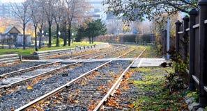 De sporen van de trein Royalty-vrije Stock Foto's