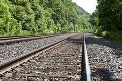 De sporen van de trein door het hout Royalty-vrije Stock Afbeelding