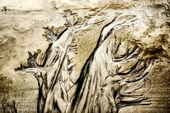 De sporen van het waterverlof in zand Royalty-vrije Stock Afbeeldingen