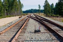 De sporenschakelaar van de spoorweg royalty-vrije stock foto