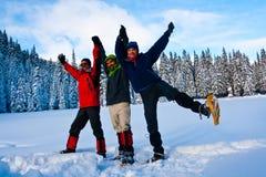 De sport van de winter Royalty-vrije Stock Afbeelding