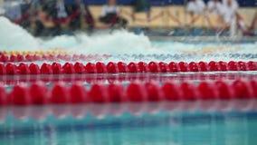 De sportieve stijlvlinder het zwemmen concurrentie dicht bij lage hoek van mening stock videobeelden