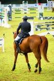 De springende concurrentie van het paard Stock Foto