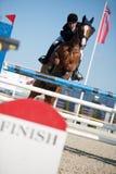 De springende concurrentie van het paard in Pezinok, Slowakije Stock Afbeeldingen