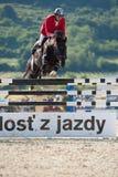 De springende concurrentie van het paard in Pezinok, Slowakije Royalty-vrije Stock Afbeelding