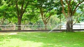 De sproeier geeft in de tuin water stock footage