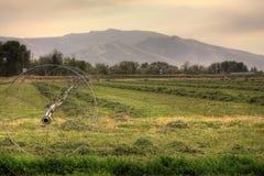 De Sproeier van de irrigatie op Wielen stock afbeeldingen