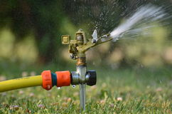 De sproeier van het tuinwater in actie Royalty-vrije Stock Foto