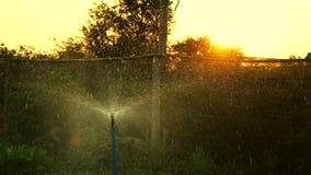 De sproeier van het water stock footage
