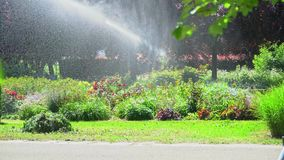 De sproeier verdeelt water over de installaties in het park op een hete zonnige dag stock footage
