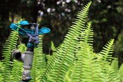 De sproeieropstelling van het water in de tuin Royalty-vrije Stock Foto's