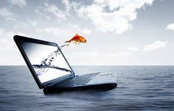 De sprong van de goudvis uit de monitor Royalty-vrije Stock Foto's