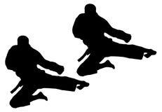 De sprong van de karate Royalty-vrije Stock Fotografie