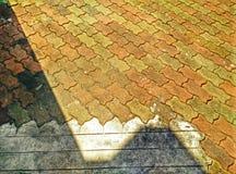 De spruit van de blickgrond in hdr Stock Foto's