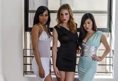 3 mooie vrouwen voor een venster Stock Foto