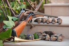 De spruit van kwartels Stock Foto's