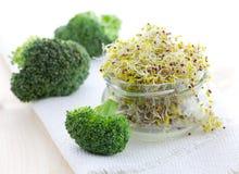 De spruiten van broccoli royalty-vrije stock foto's