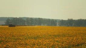 De spuitbus verwerkt de helianthusaanplanting van de pesticideaanplanting, omhoog sluit stock footage