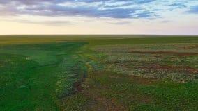 De största grässlättarna på jord, den vidsträckta Eurasian stäppen arkivbild