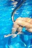 De staafbenen van de pool Stock Foto