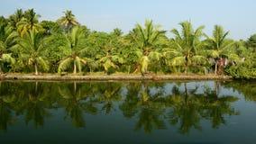 De staat van Kerala in India Stock Foto