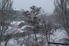 De stad is de winter gekomen Straten en bomen met sneeuw worden behandeld die vorst Stock Afbeelding