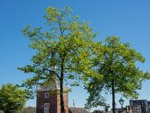 De stad van Alkmaar in Nederland Royalty-vrije Stock Afbeeldingen