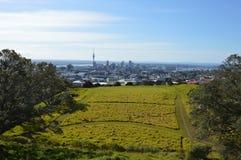 De Stad van Auckland - Volcano Crater Mount Eden Domain Stock Fotografie
