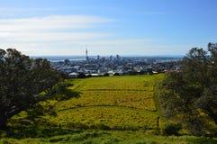De Stad van Auckland - Volcano Crater Mount Eden Domain Royalty-vrije Stock Foto's