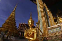 De stad van Bangkok scape Stock Foto's