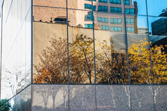 De stad van de herfst huizen en bomen en gele bladeren Royalty-vrije Stock Afbeelding