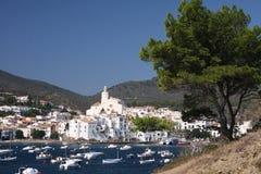 De stad van de kust roze bloemen in de voorgrond Stock Foto's