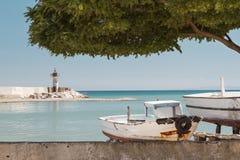 De stad van de kust roze bloemen in de voorgrond Royalty-vrije Stock Afbeeldingen