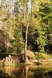 De stad van de rots, Aderspach schommelt in de Tsjechische Republiek. Stock Afbeelding