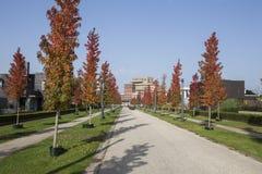De stad van Enschede in Nederland Royalty-vrije Stock Foto's