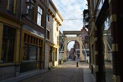 De stad van het landschapsalkmaar van Holland Stock Foto's